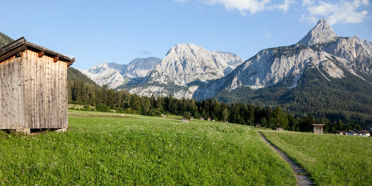 Plattenweg kurz vor Ehrwald und das Mieminger Gebirge - rechts die Ehrwalder Sonnenspitze (2.417m)