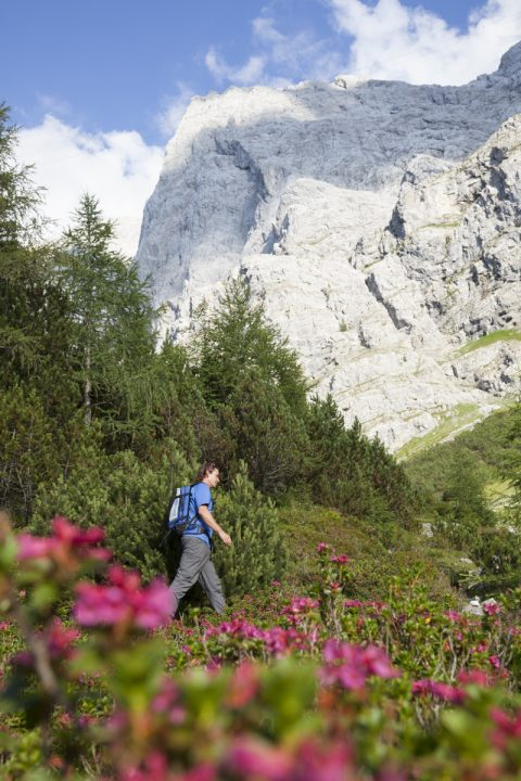 Blick auf die Westflanke der Zugspitze