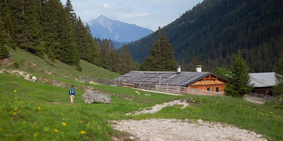 Gaistal Alm und Reither Spitze (2.374m)