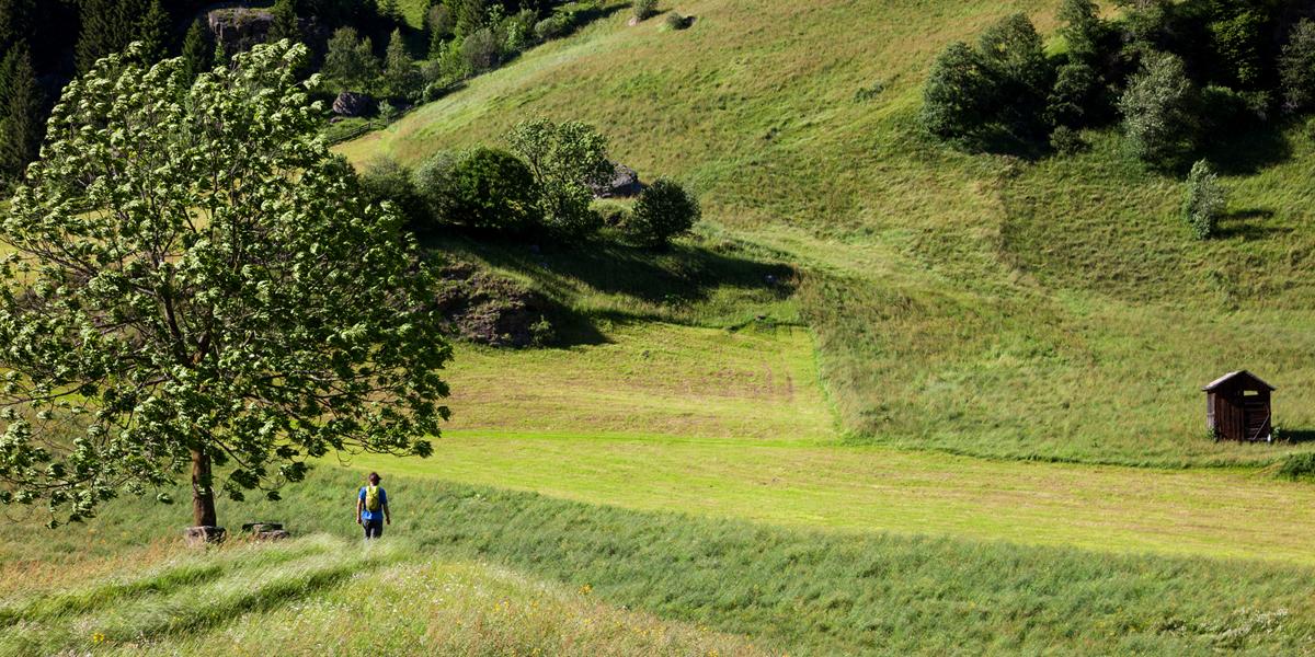 Im Ridnauntal kurz vor dem Etappenziel