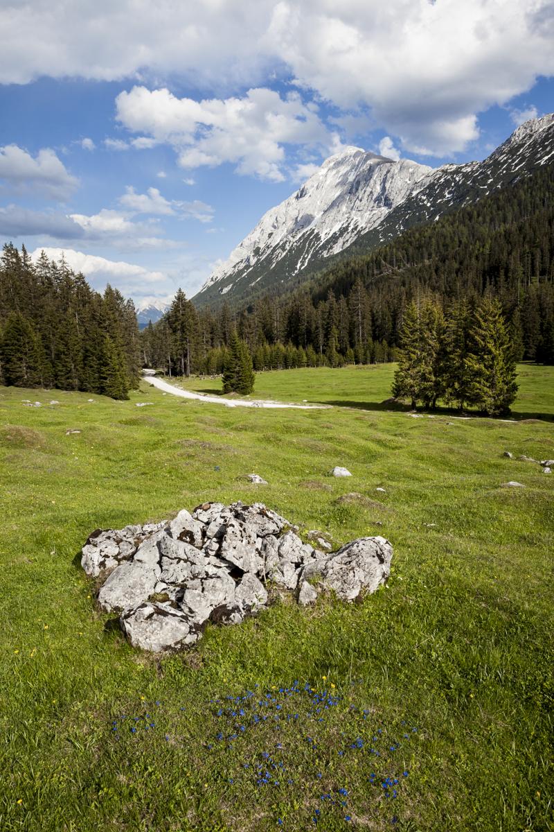 Blick vom Gaistal auf die Hohe Munde (2.662m)