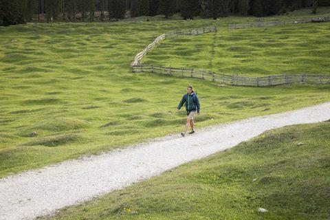 Wanderroute mit Buckelwiese