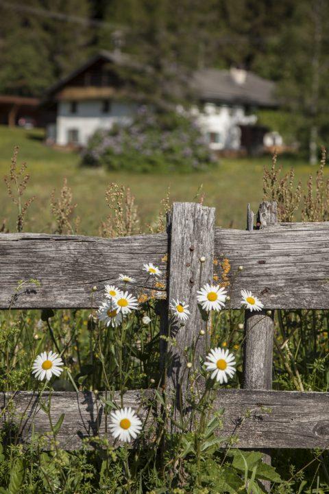 Bauernhof in der Leutasch