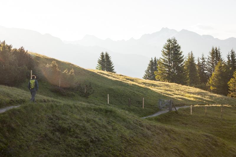 Am Höhenweg zwischen Rosskopf und Telfer Almen