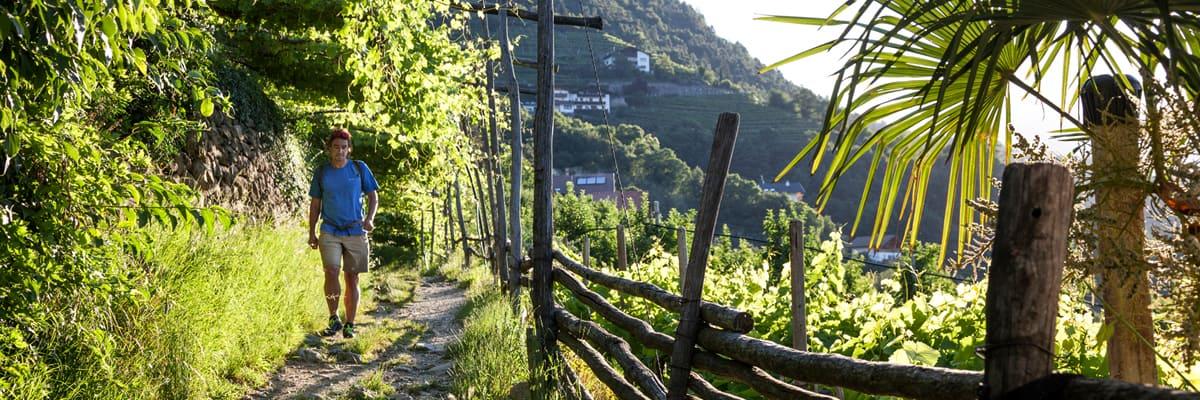 Wanderroute über Algund